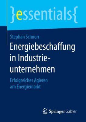 Energiebeschaffung in Industrieunternehmen - Stephan Schnorr |