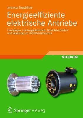 Energieeffiziente elektrische Antriebe - Johannes Teigelkötter |