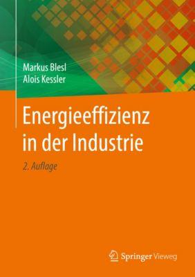 Energieeffizienz in der Industrie, Alois Kessler, Markus Blesl