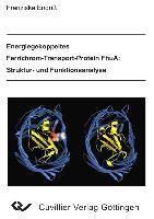 Energiegekoppeltes Ferrichrom-Transport-Protein FhuA: Struktur- und Funktionsanalyse, Franziska Endriss