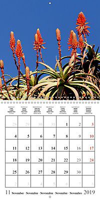 Enjoying Lanzarote (Wall Calendar 2019 300 × 300 mm Square) - Produktdetailbild 11