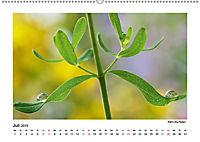 Entdeckungstour - Natur (Wandkalender 2019 DIN A2 quer) - Produktdetailbild 7
