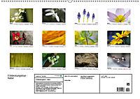 Entdeckungstour - Natur (Wandkalender 2019 DIN A2 quer) - Produktdetailbild 13