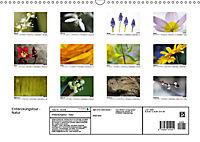 Entdeckungstour - Natur (Wandkalender 2019 DIN A3 quer) - Produktdetailbild 13