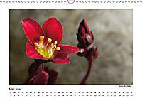 Entdeckungstour - Natur (Wandkalender 2019 DIN A3 quer) - Produktdetailbild 5