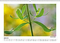Entdeckungstour - Natur (Wandkalender 2019 DIN A3 quer) - Produktdetailbild 7