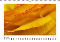 Entdeckungstour - Natur (Wandkalender 2019 DIN A3 quer) - Produktdetailbild 6