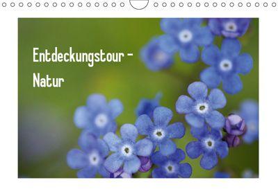 Entdeckungstour - Natur (Wandkalender 2019 DIN A4 quer), Kristin Möller