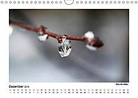 Entdeckungstour - Natur (Wandkalender 2019 DIN A4 quer) - Produktdetailbild 12