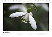 Entdeckungstour - Natur (Wandkalender 2019 DIN A4 quer) - Produktdetailbild 2
