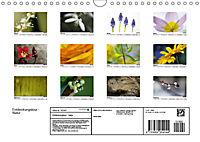 Entdeckungstour - Natur (Wandkalender 2019 DIN A4 quer) - Produktdetailbild 13