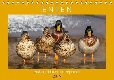 Enten. Beliebt, hübsch und imposant (Tischkalender 2019 DIN A5 quer), Rose Hurley