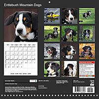 Entlebuch Mountain Dogs (Wall Calendar 2019 300 × 300 mm Square) - Produktdetailbild 13