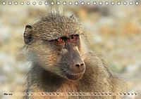 Entspanntes Affenleben (Tischkalender 2019 DIN A5 quer) - Produktdetailbild 5