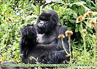 Entspanntes Affenleben (Wandkalender 2019 DIN A4 quer) - Produktdetailbild 3