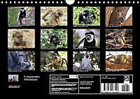 Entspanntes Affenleben (Wandkalender 2019 DIN A4 quer) - Produktdetailbild 13