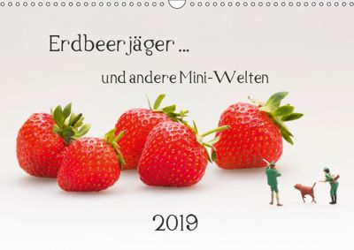 Erdbeerjäger ... und andere Mini-Welten (Wandkalender 2019 DIN A3 quer), Michael Bogumil