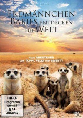 Erdmännchen Babies entdecken die Welt, Tiere Ganz Nah
