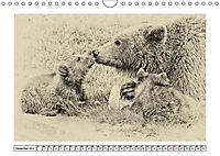Erinnerungen an Ursina und Berna. Die Bärenkinder von Bern. Alte Fotos (Wandkalender 2019 DIN A4 quer) - Produktdetailbild 3