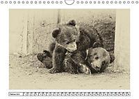 Erinnerungen an Ursina und Berna. Die Bärenkinder von Bern. Alte Fotos (Wandkalender 2019 DIN A4 quer) - Produktdetailbild 4