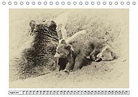 Erinnerungen an Ursina und Berna. Die Bärenkinder von Bern. Alte Fotos (Tischkalender 2019 DIN A5 quer) - Produktdetailbild 8