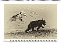 Erinnerungen an Ursina und Berna. Die Bärenkinder von Bern. Alte Fotos (Wandkalender 2019 DIN A2 quer) - Produktdetailbild 6