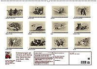 Erinnerungen an Ursina und Berna. Die Bärenkinder von Bern. Alte Fotos (Wandkalender 2019 DIN A2 quer) - Produktdetailbild 13
