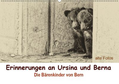 Erinnerungen an Ursina und Berna. Die Bärenkinder von Bern. Alte Fotos (Wandkalender 2019 DIN A2 quer), Susan Michel / CH