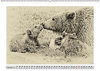 Erinnerungen an Ursina und Berna. Die Bärenkinder von Bern. Alte Fotos (Wandkalender 2019 DIN A2 quer) - Produktdetailbild 12