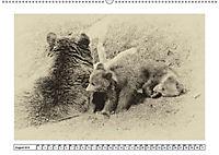 Erinnerungen an Ursina und Berna. Die Bärenkinder von Bern. Alte Fotos (Wandkalender 2019 DIN A2 quer) - Produktdetailbild 8