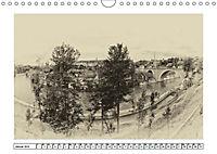 Erinnerungen an Ursina und Berna. Die Bärenkinder von Bern. Alte Fotos (Wandkalender 2019 DIN A4 quer) - Produktdetailbild 1