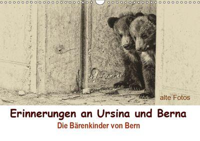 Erinnerungen an Ursina und Berna. Die Bärenkinder von Bern. Alte Fotos (Wandkalender 2019 DIN A3 quer), Susan Michel / CH