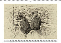 Erinnerungen an Ursina und Berna. Die Bärenkinder von Bern. Alte Fotos (Wandkalender 2019 DIN A3 quer) - Produktdetailbild 11