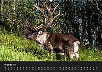 Erlebnis Norwegen: Narvik bis Tromsø (Wandkalender 2019 DIN A2 quer) - Produktdetailbild 8