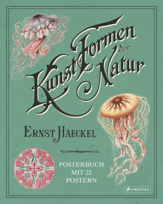 Ernst Haeckel: Kunstformen der Natur - Kira Uthoff |