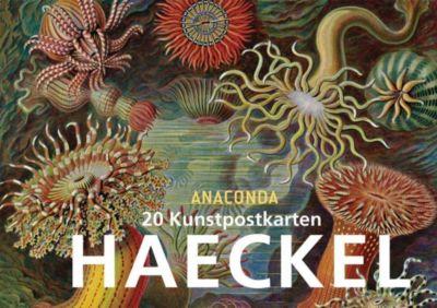 Ernst Haeckel Postkartenbuch - Ernst Haeckel  