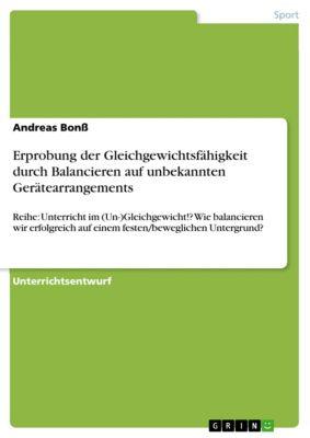Erprobung der Gleichgewichtsfähigkeit durch Balancieren auf unbekannten Gerätearrangements, Andreas Bonss
