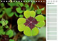 Es grünt so grün (Tischkalender 2019 DIN A5 quer) - Produktdetailbild 1