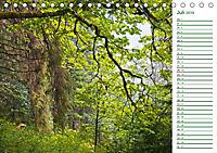 Es grünt so grün (Tischkalender 2019 DIN A5 quer) - Produktdetailbild 7