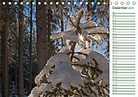 Es grünt so grün (Tischkalender 2019 DIN A5 quer) - Produktdetailbild 12