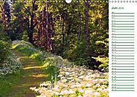 Es grünt so grün (Wandkalender 2019 DIN A3 quer) - Produktdetailbild 6