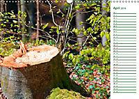 Es grünt so grün (Wandkalender 2019 DIN A3 quer) - Produktdetailbild 4