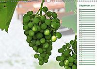 Es grünt so grün (Wandkalender 2019 DIN A3 quer) - Produktdetailbild 9