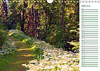 Es grünt so grün (Wandkalender 2019 DIN A4 quer) - Produktdetailbild 6