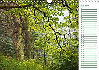 Es grünt so grün (Wandkalender 2019 DIN A4 quer) - Produktdetailbild 7