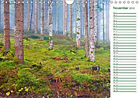 Es grünt so grün (Wandkalender 2019 DIN A4 quer) - Produktdetailbild 11