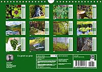 Es grünt so grün (Wandkalender 2019 DIN A4 quer) - Produktdetailbild 13