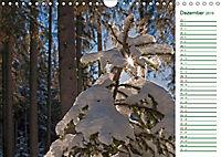 Es grünt so grün (Wandkalender 2019 DIN A4 quer) - Produktdetailbild 12