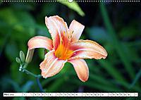 ESCAMBRAY - Kubas grünes Herz (Wandkalender 2019 DIN A2 quer) - Produktdetailbild 3