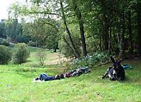Esel - Wanderungen im Limousin - Produktdetailbild 2